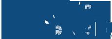 silver standard logo